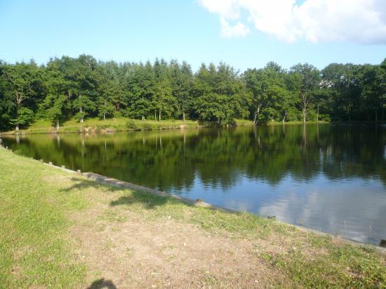 un étang pas très loin