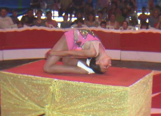le cirque Zawatta