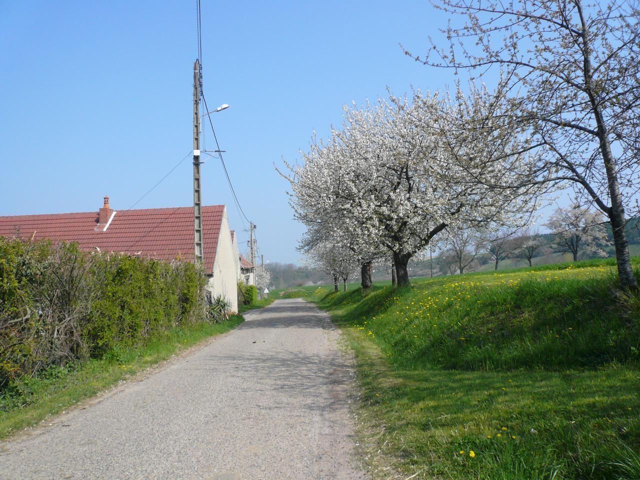 Rue des Bravets